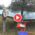 Olive Picking and Crating Machines